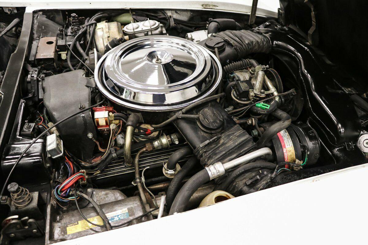 1981 White Chevrolet Corvette   | C3 Corvette Photo 10