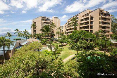 Sands of Kahana, Float Weeks 1-51, Biennial Even Usage, Paradise in Maui!!