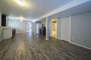 Large, Bright, Fully Renovated Basement Suite - with Utilites!