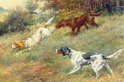 English & Irish Setter Dogs by Edmund Osthaus 1910 LARGE New Blank Note Cards  ()