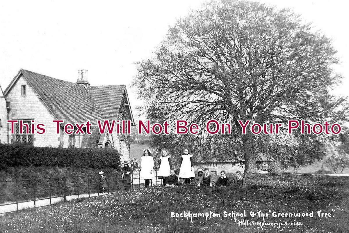 DO 1054 - School & Greenwood Tree, Lower Bockhampton, Dorset