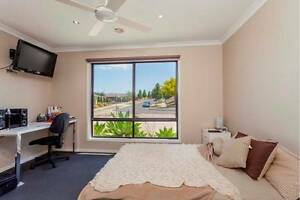 Share house across from Waurn Ponds University Highton Geelong City Preview