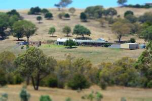 FOR SALE - 100 acre property located 5 minutes from Goulburn CBD Goulburn Goulburn City Preview