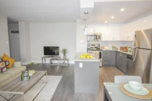 Recently Renovated 2 Bedroom in Hamilton! Bright & Spacious