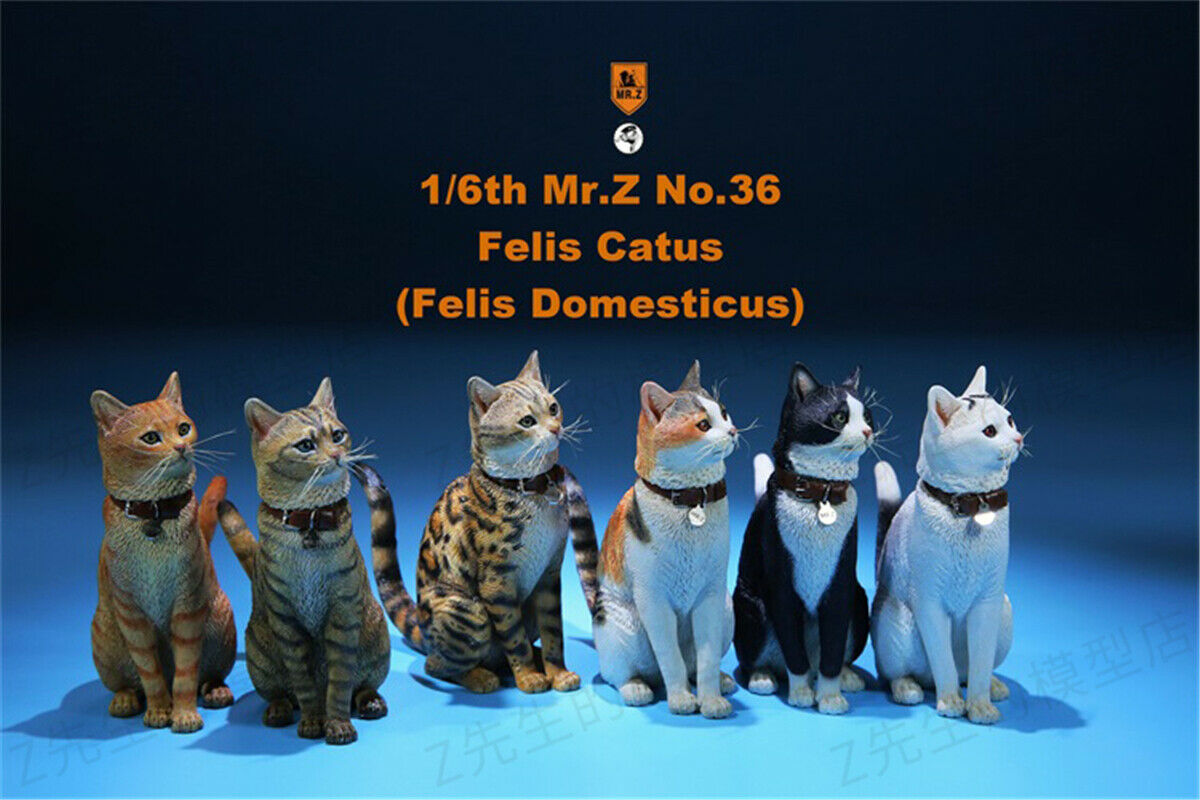 Mr.Z 1//6 Domestic Cat Felis catus Figure Animal Model Collector Toys Xmas Gift