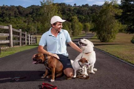 a. DOGood - Dog Minding Training Adventure Obedience Behaviour