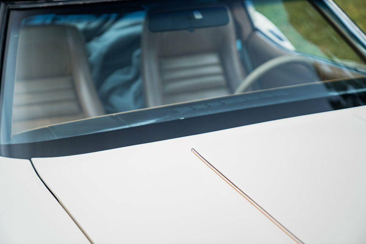 1981 Beige Chevrolet Corvette   | C3 Corvette Photo 8