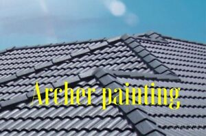 Roof painting, cleaning, free quote fast and on time Airds Campbelltown Area Preview