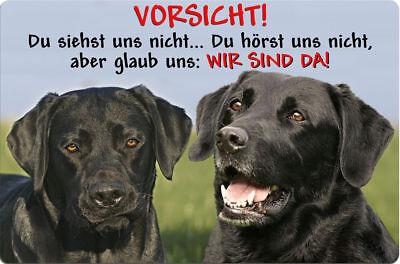 LABRADOR - A4 Metall Warnschild Hundeschild Alu SCHILD Türschild - LAB 53 T2 S+S