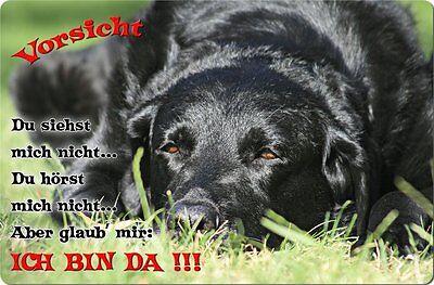 LABRADOR - A4 Metall Warnschild Hundeschild Alu SCHILD Türschild - LAB 59 T2