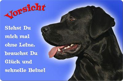 LABRADOR - A4 Metall Warnschild Hundeschild Alu SCHILD Türschild - LAB 54 T12 S