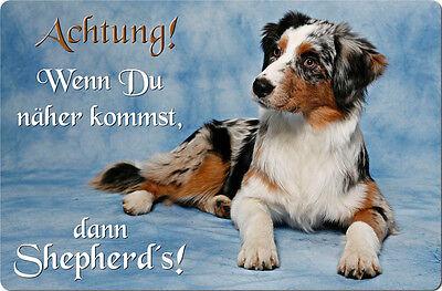 Australian SHEPHERD - A4 Alu Warnschild Hundeschild SCHILD Türschild  ASD 12 T38
