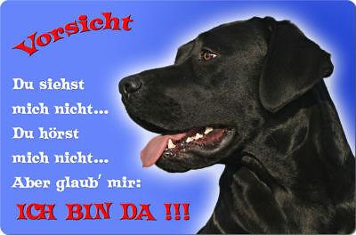 LABRADOR - A4 Metall Warnschild Hundeschild Alu SCHILD Türschild - LAB 20 T2 S
