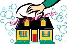 Emily's cleaning service Tenambit Maitland Area Preview
