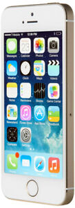 Apple iPhone 5s GSM Unlocked 16GB Smartphone - Gold