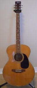 Magnum 6 String Acoustic Kingston Kingston Area image 2