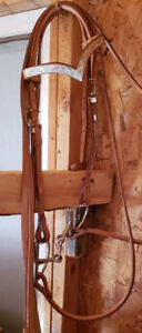 Bridle, Reins, and Bit