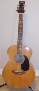 Magnum 6 String Acoustic Kingston Kingston Area image 1