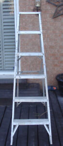 Extendable and 6ft Ladders