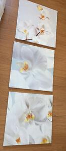 Cadre fleur blanc 3 cadres