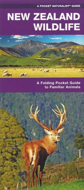 New Zealand Wildlife: A Folding Pocket Guide *IN STOCK IN MELBOURNE - NEW*