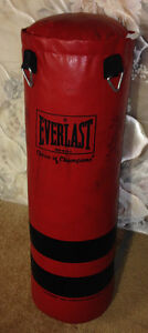 Everlast Weight Bag plus 3 pairs of gloves