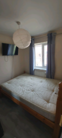 Spare room for rent / house-share