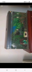 2.3ft fish tank and lid
