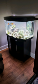 Juwel 180 vision tank and stand