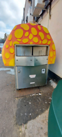 Wood and gas pizza oven