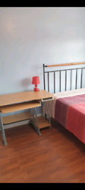 Master bedroom available for rent (KT91JN)