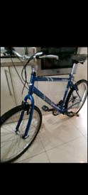 "Men's Dawes mountain bike 20"" frame 18 speed full working order"
