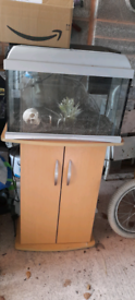 Fish tank set up with stand