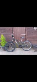 Raleigh bike 24 inch wheels