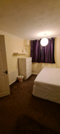 Spacious double bedroom available