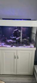 Aqua one marine tank