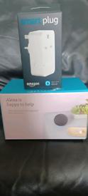 Echo dot and smart plug