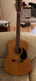 Horner 12 string guitar