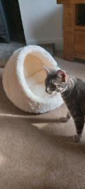 Brand new very soft cat house