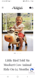 Ride on cow