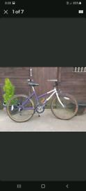 Emelle ladies/teenager mountain bike