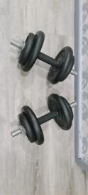 Cast iron weights 2x 15kg