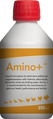 Amino+, Liquid tonic with the four essential amino acids for Pigeons