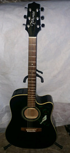 Takamine Acoustic/electric guitar.