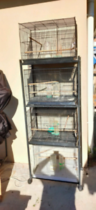 Cages on stand with water and seed dispensers