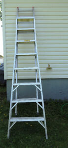 13ft Extension Ladder