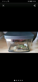Love fish Aquarium tank 40L