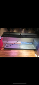 55 gallon fish tank with lid and light