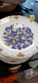 Royal Albert Collectors plates