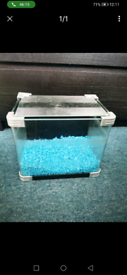 Small fish tank great for start up